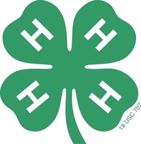 State 4-H Council registration deadline is approaching
