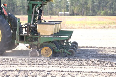 UGA agriculture climatologist says farmers should expect dry planting conditions