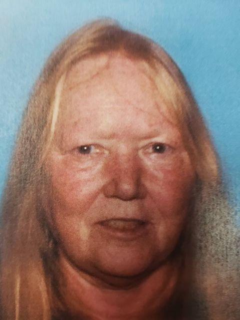 Investigators search for missing person