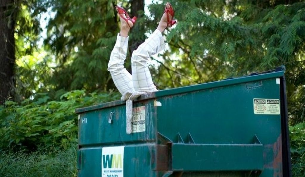 Dumpster diving essay thesis