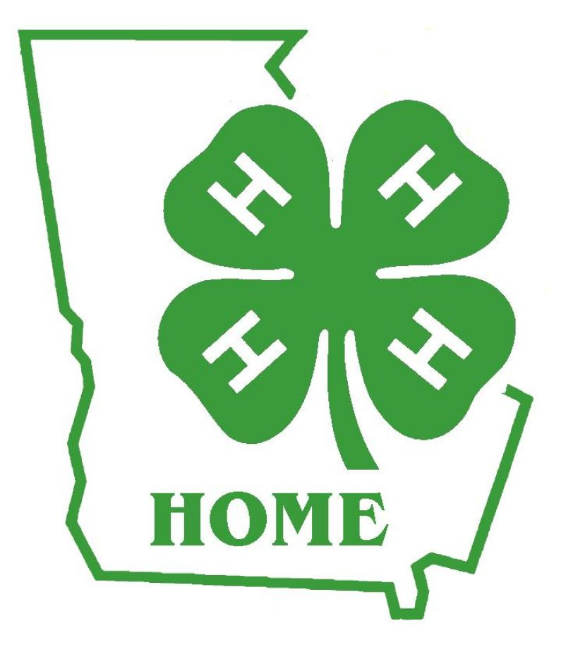 4-H'ers who completed leadership projects should start working on award applications