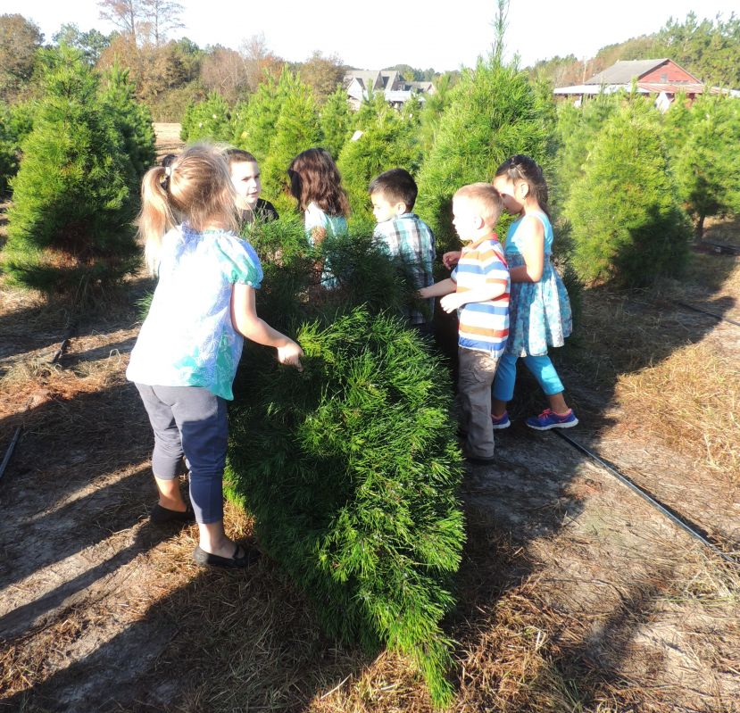 West Green Pre-K prepares for Christmas